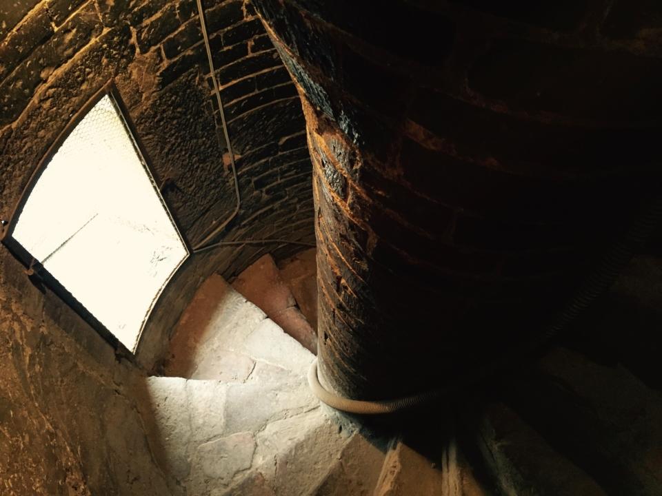 Visite ai percorsi nascosti del duomo di Modena – a cura di E. Silvestri